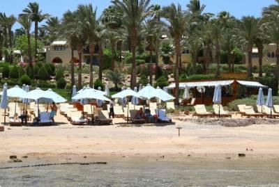 В АТОР назвали сроки возобновления чартеров на курорты Египта