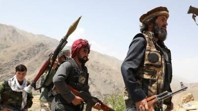 Захарова заявила о контроле талибами двух третей границы Афганистана с Таджикистаном