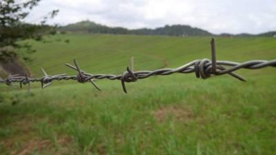 Литва построит ограждение на границе с Беларусью и мира