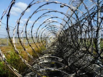 Литва начинает устанавливать барьер из колючей проволоки на границе с Беларусью