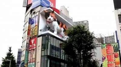 Гигантскую цифровую кошку установили на улице в Японии – впечатляет! (Видео)