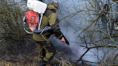 В России за сутки потушили 28 лесных пожаров