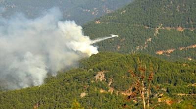 В Турции локализованы 98 из 107 очагов лесных пожаров
