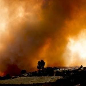 В Турции задержали подозреваемого в поджогах лесов