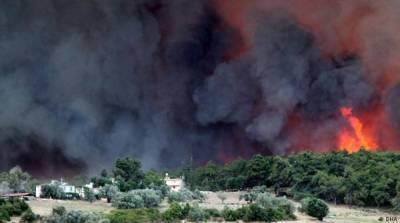 Лесные пожары в Турции: локализовали почти 100 очагов
