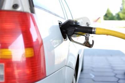В России пока не будут вводить запрет на экспорт бензина - СМИ