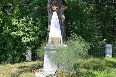 Воинское захоронение в смоленской деревне Доброселье приведут в порядок к сентябрю