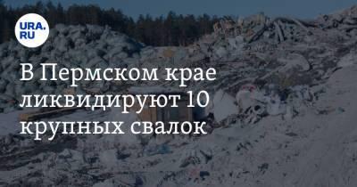В Пермском крае ликвидируют 10 крупных свалок