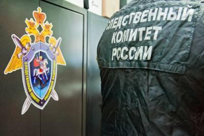 СК возбудил дело после смерти 12-летнего мальчика под Волгоградом