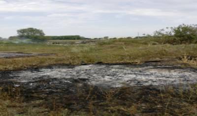 Жители Башкирии организовали незаконную свалку недалеко от деревни Угузево