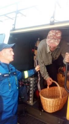 Спасатели Удмуртии нашли в лесу пропавшего 70-летнего дедушку
