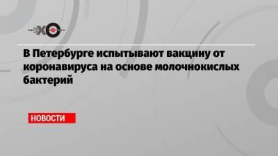 В Петербурге испытывают вакцину от коронавируса на основе молочнокислых бактерий