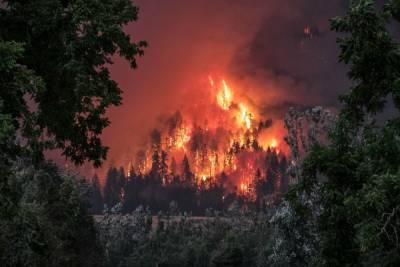 Под Волгоградом из-за природного пожара эвакуировали жителей хутора