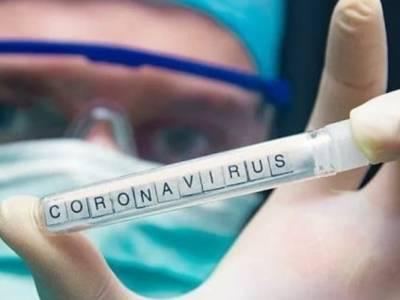 Американская разведка не пришла к единому выводу о происхождении коронавируса