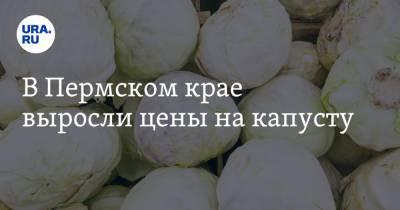 В Пермском крае выросли цены на капусту