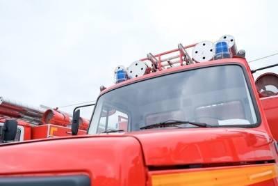Под Волгоградом продолжают бороться с крупным природным пожаром