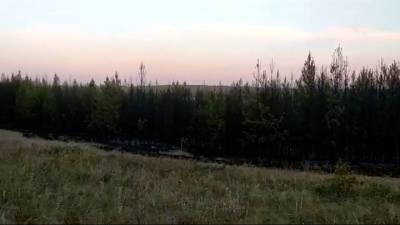 """Новости на """"России 24"""". В Башкирии огонь приблизился к деревне"""