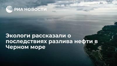 Сотрудник РАН Сапожников: животные в Черном море могут пострадают от разлива нефтепродуктов