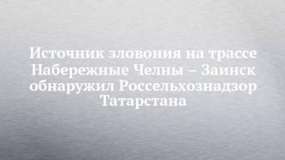 Источник зловония на трассе Набережные Челны – Заинск обнаружил Россельхознадзор Татарстана