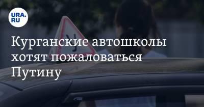 Курганские автошколы хотят пожаловаться Путину. Из-за новых правил водители проваливают экзамены