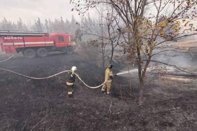 Под Волгоградом полностью потушили природный пожар на площади 330 га