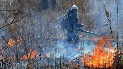 В Татарстане продлили штормовое предупреждение в связи с высокой пожароопасностью лесов
