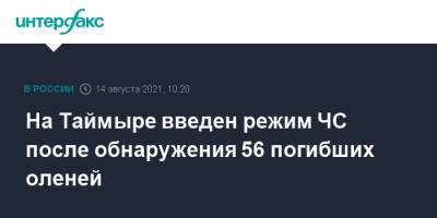 На Таймыре введен режим ЧС после обнаружения 56 погибших оленей