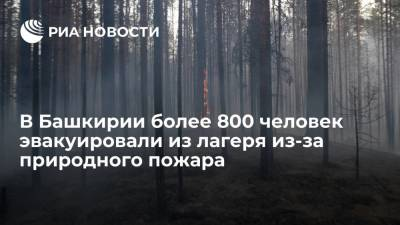 В Башкирии более 800 человек, включая 750 детей, эвакуировали из лагеря из-за природного пожара