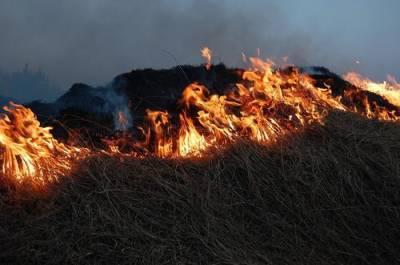 В Башкирии 750 детей эвакуировали из лагеря из-за природного пожара