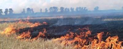 В Башкирии из-за пожара из лагеря эвакуировали 750 детей