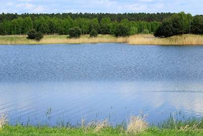 Татарстанец пошел купаться на озеро и утонул
