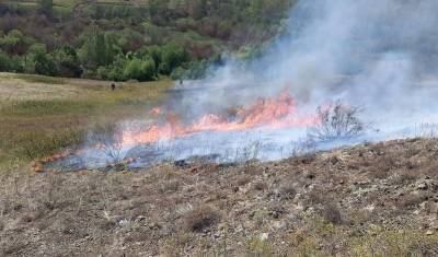 Два новых очага лесных пожаров обнаружили в Бурзянском районе Башкирии