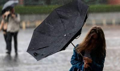 В ближайшие три дня в Ленобласти ожидаются ливни и грозы