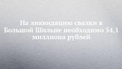 На ликвидацию свалки в Большой Шильне необходимо 54,1 миллиона рублей