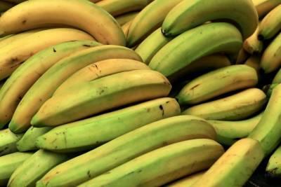 За 2021 год Россельхознадзор проверил 1,4 млн тонн импортных фруктов в Петербурге