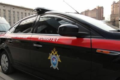 Следком задержал подозреваемого в убийстве 19-летней девушки в Мытищах