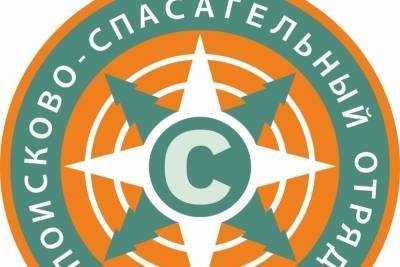 Пропавшего годовалого ребенка ищут в Темкинском районе Смоленской области