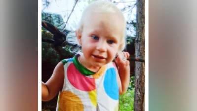 По факту исчезновения годовалой девочки в Смоленской области возбудили уголовное дело