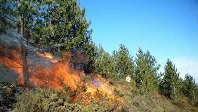 В Агсуинском районе начался пожар