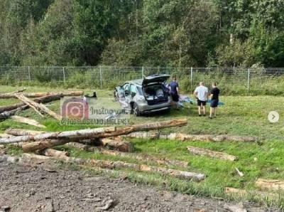 В Смоленской области бревна с лесовоза выпали на легковушку