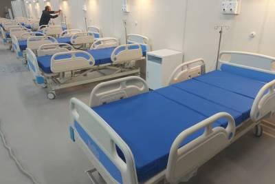 В Петербурге выросло суточное число госпитализированных с коронавирусом