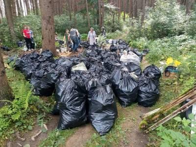 326 мешков мусора. Эко-активисты расчищали свалку в лесу под Смоленском