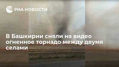 Огненное торнадо наблюдали жители Башкирии на пастбище между двумя селами