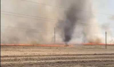Жители Башкирии сняли на видео огненное торнадо — власти объяснили причины явления
