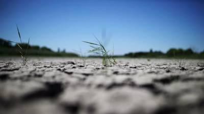 Режим ЧС введён в Пермском крае из-за засухи