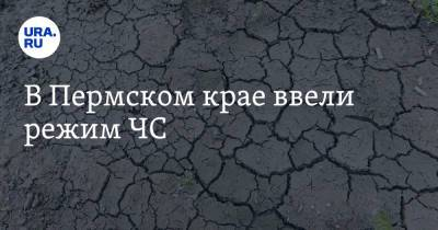 В Пермском крае ввели режим ЧС