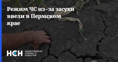 Режим ЧС из-за засухи ввели в Пермском крае