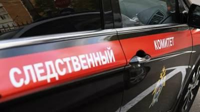 В Смоленской области нашли живой пропавшую годовалую девочку