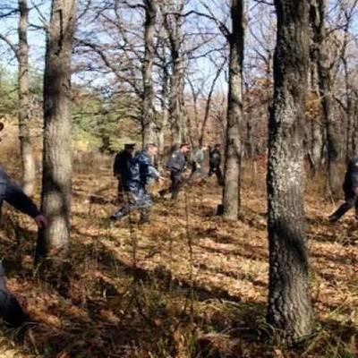 Девочку 1,5 лет, которую несколько дней искали в Смоленской области, нашли живой
