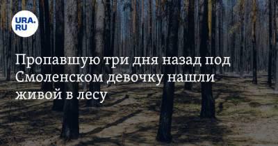 Пропавшую три дня назад под Смоленском девочку нашли живой в лесу. Видео